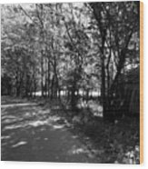 Natchez Trail Wood Print