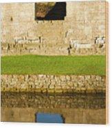 Nunney Castle Wood Print