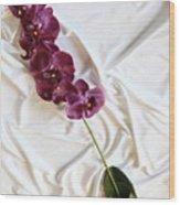 Silk Flower Wood Print