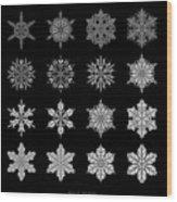 Snowflake Simulation Wood Print