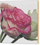Three Flowers Wood Print