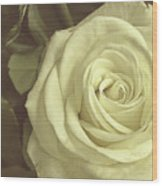 Timeless Rose Wood Print