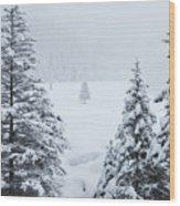 Winter Landscapes Wood Print