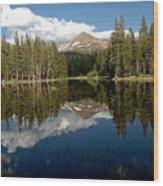 Yosemite Reflections Wood Print