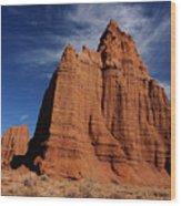 Canyonlands  National Park Wood Print