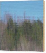 6000-reflections Wood Print