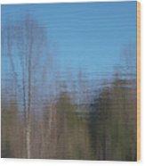6002-reflections Wood Print