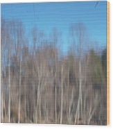 6003-reflections Wood Print
