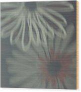 60's Wood Print