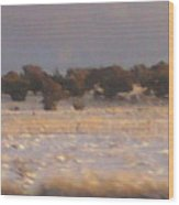 Snowy Desert Landscape Wood Print