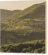 Sunny Transcarpathia Wood Print