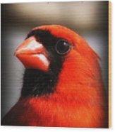 6751-010 Cardinal - Miss You Wood Print