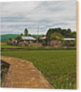 6x1 Philippines Number 123 Rice Fields Panorama Wood Print