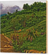 6x1 Philippines Number 470 Panorama Tagaytay Wood Print