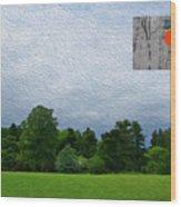 7-16-3057c Wood Print