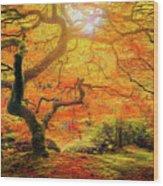 7 Abstract Japanese Maple Tree Wood Print