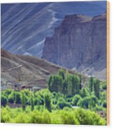 aerial view of Leh ladakh landscape Jammu and Kashmir India Wood Print