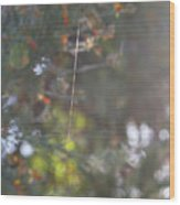 Australian Bush Wood Print