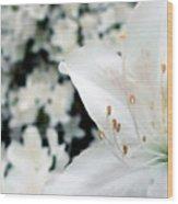 Azalea Wood Print