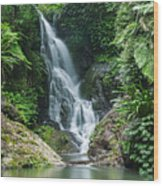 Beautiful Waterfall Wood Print