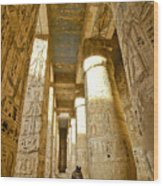 Colonnade In An Egyptian Temple Wood Print