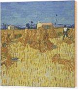Corn Harvest In Provence Wood Print