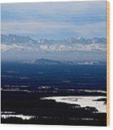 Denali Park - Alaska Wood Print