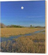 7- Everglades Moon Wood Print