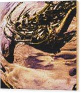 Fisheye Camera Wood Print