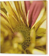 Flower Abstract Wood Print