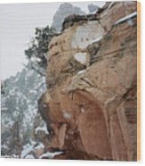 Grand Canyon In Snow Wood Print