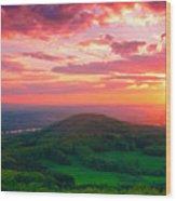 7 Hills Of Bonn Wood Print