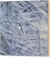 7. Ice Encrustation, Upper West Allen Wood Print