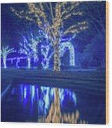 Lights, Christmas, Light, Christmas Tree, Green, Color, Red, Blu Wood Print