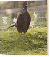 Mr Pheasant Wood Print