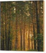 Nature In Wood Print