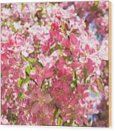 Pink Cherry Flowers Wood Print
