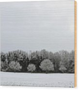 Snow On Epsom Downs Surrey Uk Wood Print