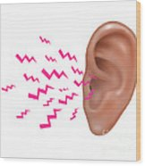 Sound Entering Human Outer Ear Wood Print