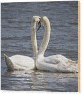 Swan -- Wood Print