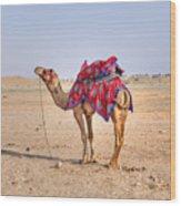Thar Desert - India Wood Print