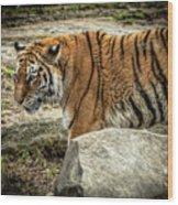 Tiger Wood Print