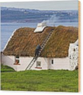 Traditional Thatch Roof Cottage Ireland Wood Print