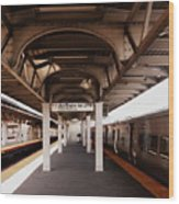 Train Station Series Wood Print