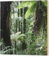 Tropical Jungle 2 Wood Print