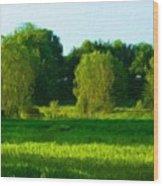 Landscape Nature Art Wood Print