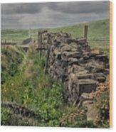 Rock Wall And Field In Ireland 7010199  Wood Print