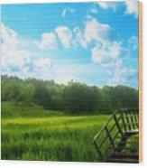 Landscape Pics Wood Print