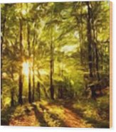 Nature Landscape Paintings Wood Print