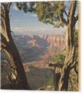 713261 V Desert View Grand Canyon Wood Print